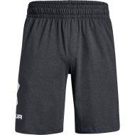 Under Armour shortsit UA Sportstyle cotton logo shorts