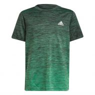 Adidas t-paita B.A.R. grad tee b GS0341