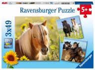 Ravensburger Palapeli Loving Horses, 3x49 palaa