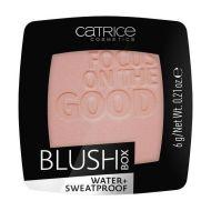 Catrice Blush Box poskipuna 025 6 g