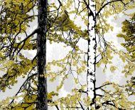 Vallila Retriitti kappaverho 60x250 cm vihreä