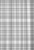 Pisla Suihkuverho Checked 180x200 cm tekstiili
